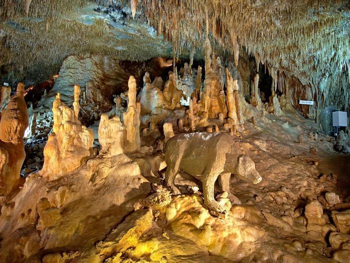 佩特拉罗(Petralona)洞穴